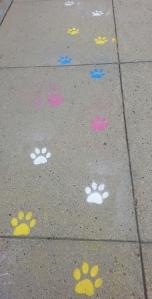 Sidewalk paws